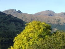 Autumn view of The Cobbler